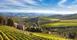 Flora der Toskana