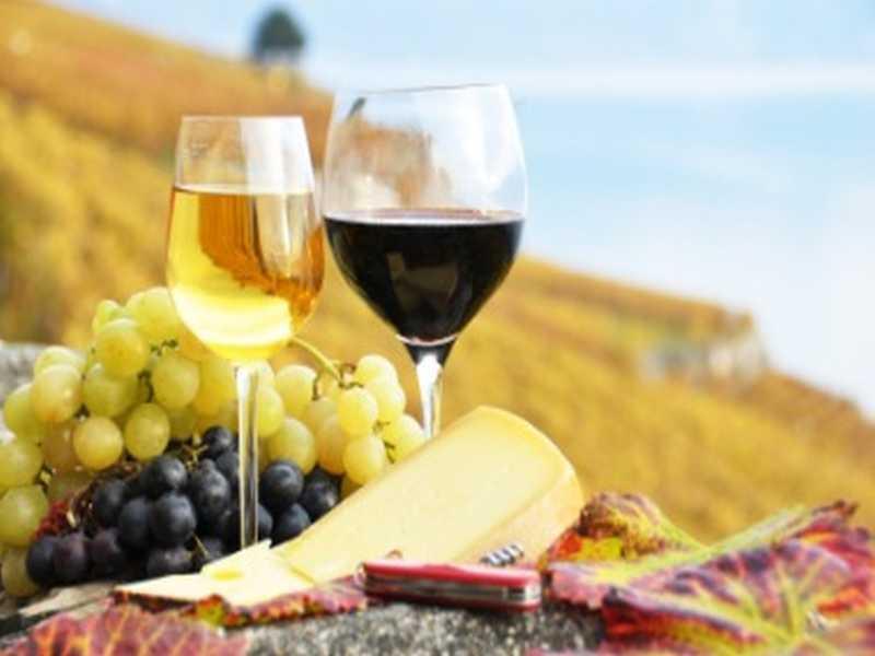Wein in der Toskana
